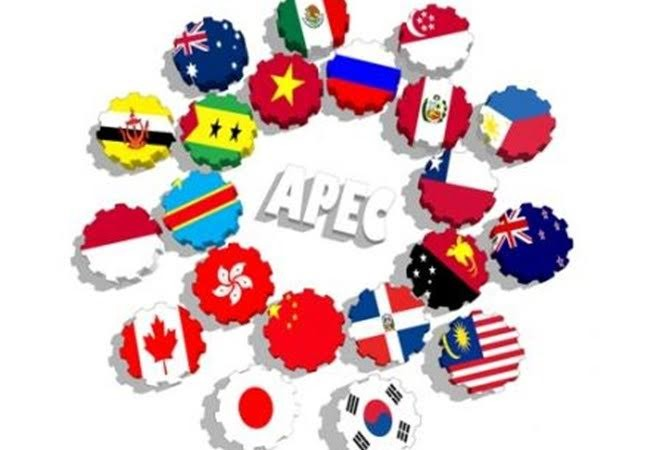 កាសែតម៉ាឡេស៊ីវាយតម្លៃថា វៀតណាមមានឱកាសបង្កើនកំណើនច្រើនជាមួយ APEC - ảnh 1