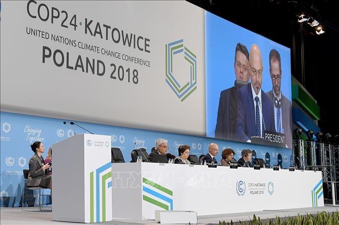 អង្គការសហប្រជាជាតិអបអេសារទរបណ្តាថ្នាក់ដឹកនាំក្រុម G20  សន្យាទប់ទល់នឹងការប្រែប្រួលអាកាសធាតុ - ảnh 1