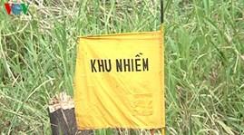 Khắc phục ô nhiễm dioxin tại sân bay Biên Hòa, tỉnh Đồng Nai - ảnh 1