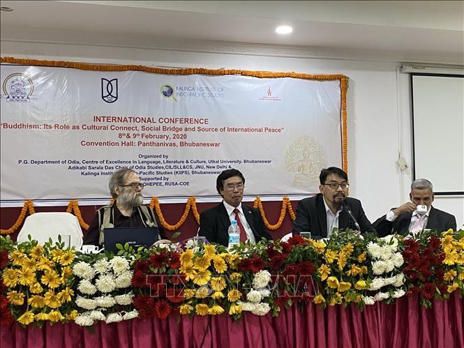Việt Nam tham dự hội thảo quốc tế về Phật giáo tại Ấn Độ - ảnh 1
