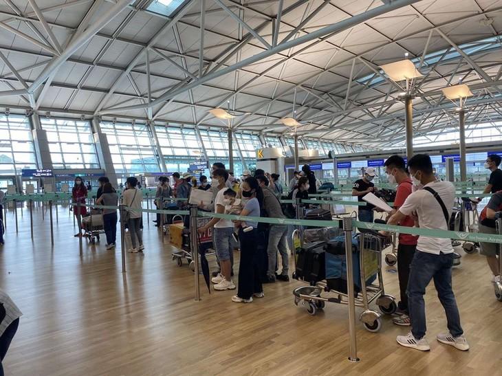 Đưa hơn 250 công dân Việt Nam từ Hàn Quốc về nước - ảnh 1