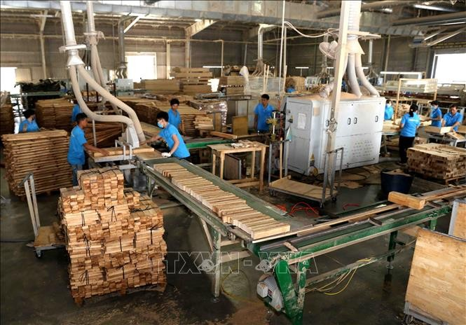 Nông, lâm, thủy sản xuất siêu 6,2 tỷ USD - ảnh 1