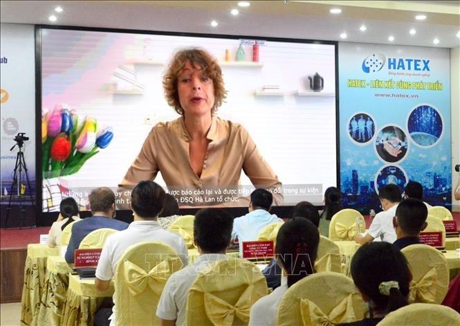 Kết nối cung cầu công nghệ Việt Nam - Hà Lan - ảnh 2