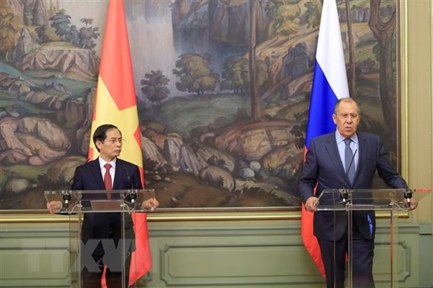 Dư luận Nga đánh giá tích cực chuyến thăm của Bộ trưởng Ngoại giao Bùi Thanh Sơn - ảnh 1