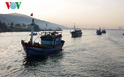 Вьетнамские рыбаки против введения Китаем незаконного запрета на ловлю рыбы - ảnh 1
