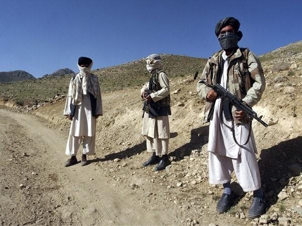 Китай, Пакистан, Афганистан призвали к стимулированию процесса афганского мирного урегулирования - ảnh 1