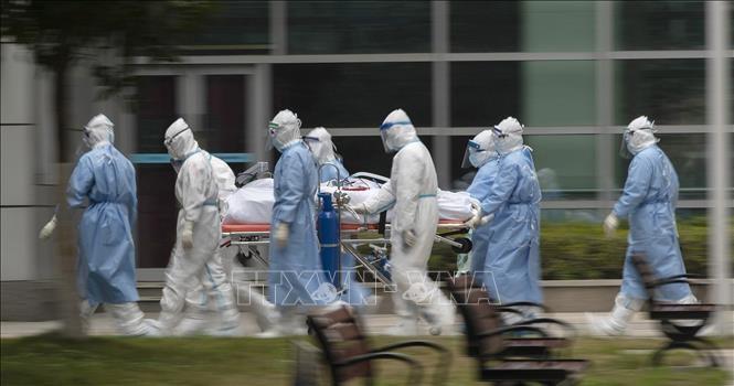Пандемия COVID-19 по-прежнему бушует во всём мире - ảnh 1