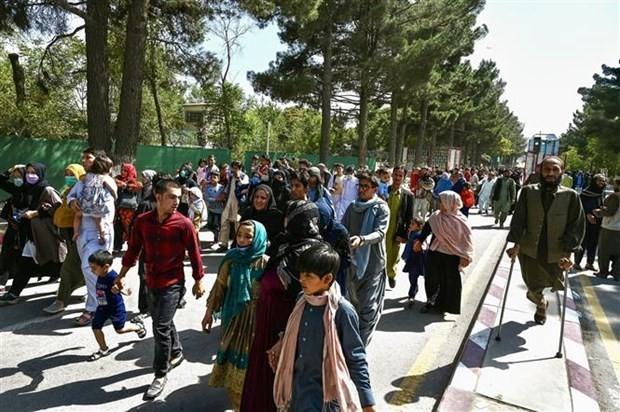 Талибы приказали возобновить работу школ - ảnh 1