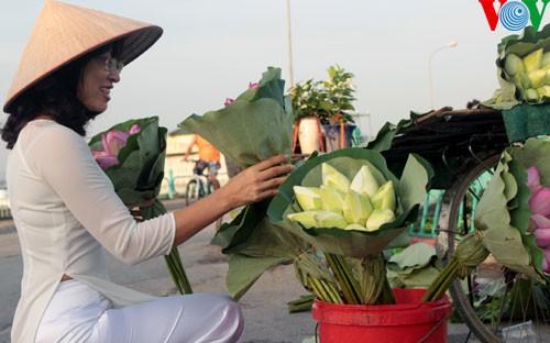 ภาพดอกบัวในกรุงฮานอย - ảnh 14