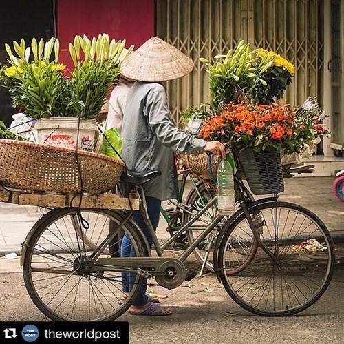 ความงามของเวียดนามผ่านมุมมองของนักท่องเที่ยวชาวต่างชาติ - ảnh 15