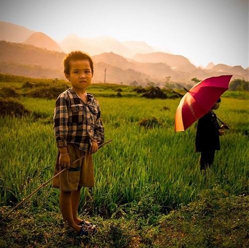 ความงามของเวียดนามผ่านมุมมองของนักท่องเที่ยวชาวต่างชาติ - ảnh 7