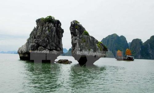 สื่อของอาร์เจนตินาชื่นชมการท่องเที่ยวของเวียดนามที่มีแรงดึงดูดใจมาก  - ảnh 1