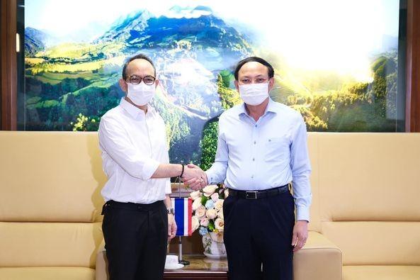 ผลักดันความร่วมมือระหว่างท้องถิ่นของเวียดนามกับไทย - ảnh 1