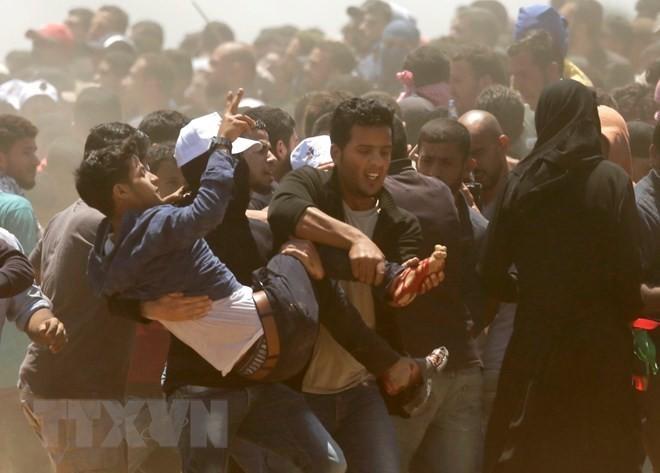 Condolences to Palestine over casualties in Gaza Strip conflict - ảnh 1