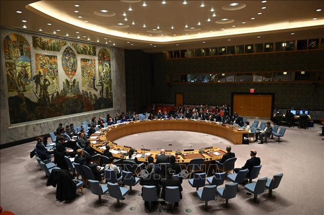 UNSC discusses Kosovo mission's operation - ảnh 1