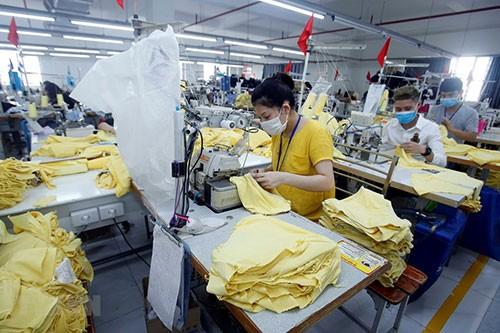 Vietnam prepares for post-COVID-19 development stage - ảnh 1