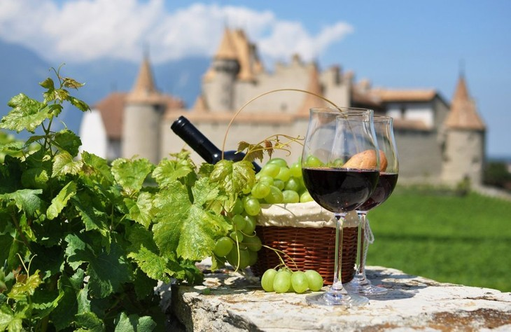 An insight into French wine - ảnh 1
