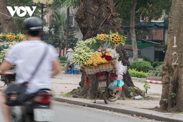 Making fish sauce in southern Vietnam - ảnh 12