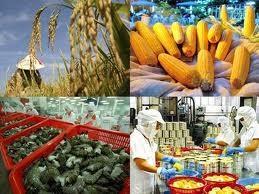 Aumentan exportaciones de productos agrícolas, forestales y pesqueros de Vietnam - ảnh 1
