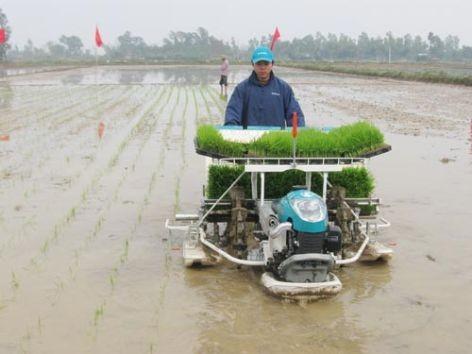 Mecanización eleva la producción agrícola y mejora la vida de campesinos - ảnh 3