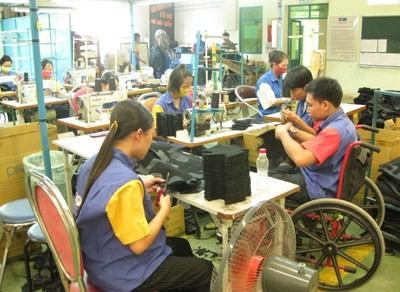 Para el trabajo duradero y el fomento del papel de personas discapacitadas  - ảnh 1