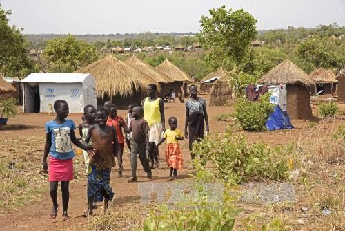 Comisión Europea destina ayuda humanitaria de 13 millones de dólares para Sudán del Sur - ảnh 1