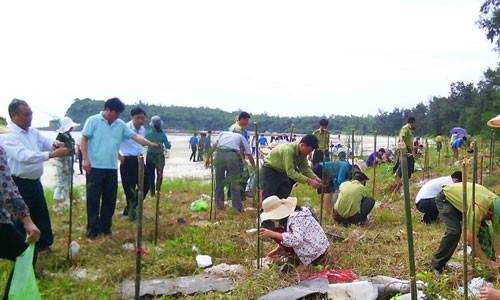 Localidades vietnamitas saludan el Día Mundial del Medio Ambiente  - ảnh 1