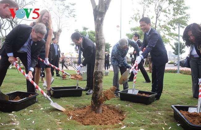 Da Nang inaugura el Parque del APEC  - ảnh 1