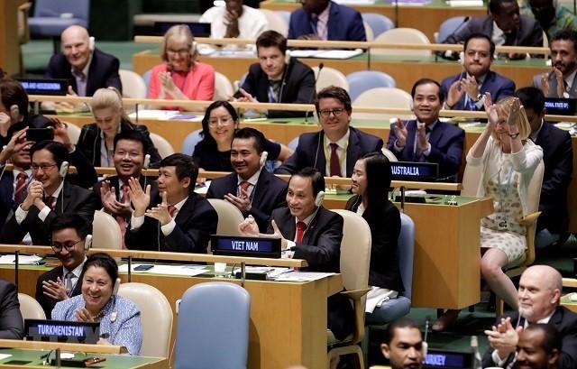 Vietnam asume oficialmente puesto de miembro no permanente del Consejo de Seguridad de la ONU - ảnh 1