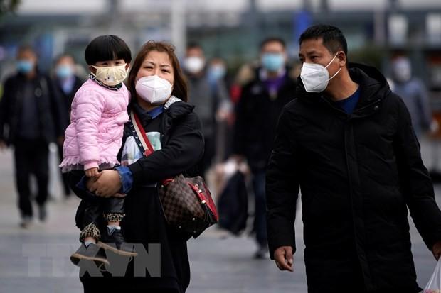 Organización Mundial de la Salud preocupada por la expansión del nuevo coronavirus - ảnh 1