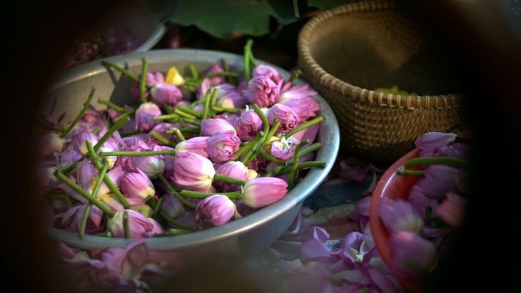 Té de loto, una especialidad de los hanoyenses que conecta el pasado con el presente - ảnh 2
