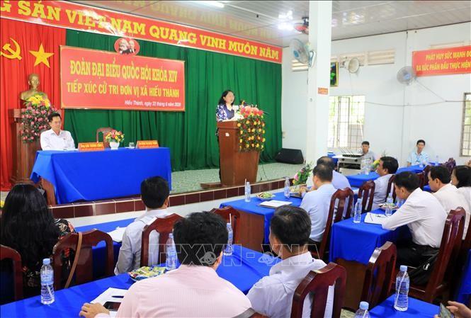 Reuniones con el electorado en localidades vietnamitas - ảnh 1