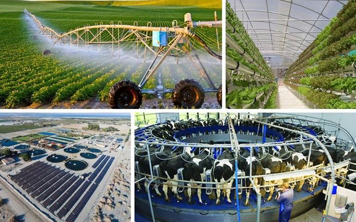 Vietnam promueve aplicación tecnológica de riego por goteo en la agricultura - ảnh 1