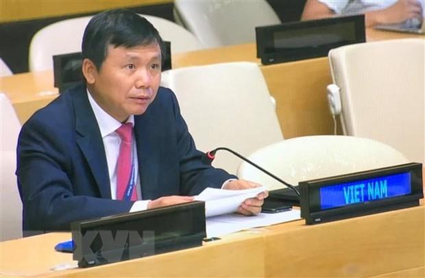 Vietnam llama a promover la participación de las mujeres en el proceso de paz en Afganistán - ảnh 1