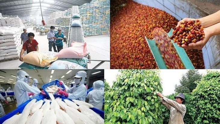 Exportación agro-silvícola y acuícola supera 22 mil millones de dólares en lo que va del año - ảnh 1