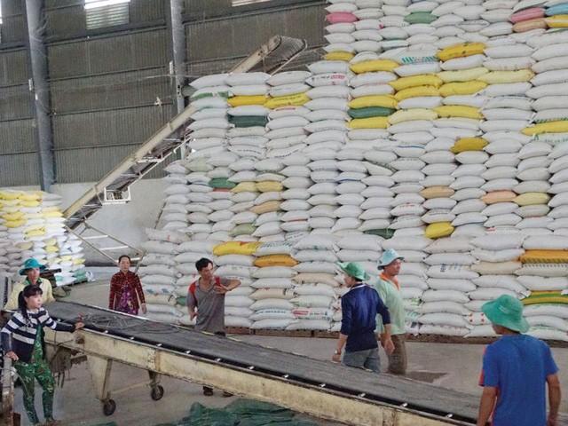 Exportaciones de arroz de Vietnam alcanzan 1,9 mil millones de dólares en lo que va de 2020 - ảnh 1