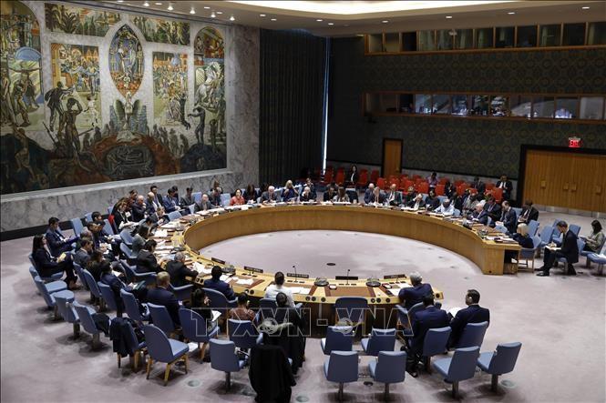 Consejo de Seguridad de la ONU rechaza la prórroga del embargo de armas a Irán - ảnh 1