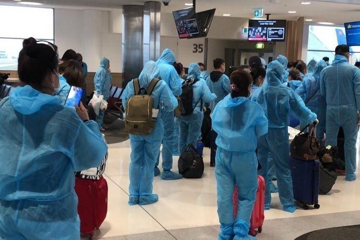Regresan a casa 350 ciudadanos vietnamitas de Australia y Nueva Zelanda - ảnh 1