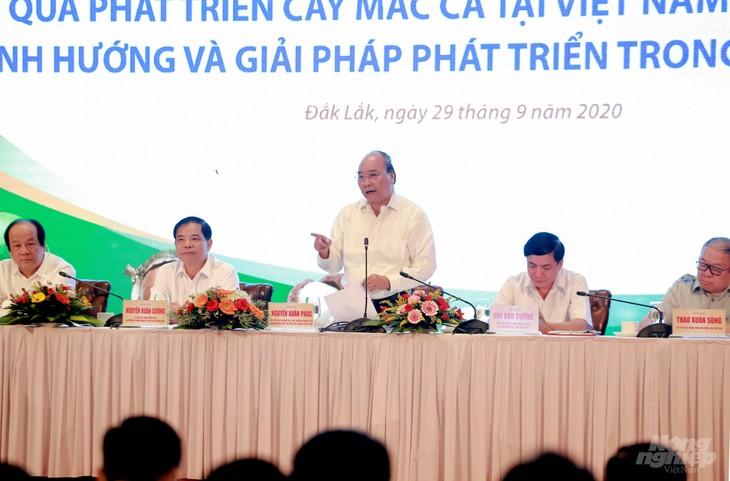 Premier vietnamita insta a realizar planificación de áreas cultivadas de macadamia - ảnh 1