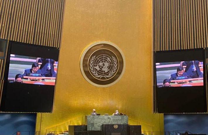 La Asamblea General de ONU adopta la primera resolución propuesta por Vietnam - ảnh 1