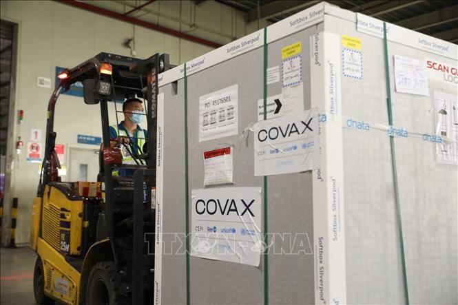 Llegan a Vietnam casi 1,7 millones de dosis de vacuna contra el covid-19 - ảnh 1