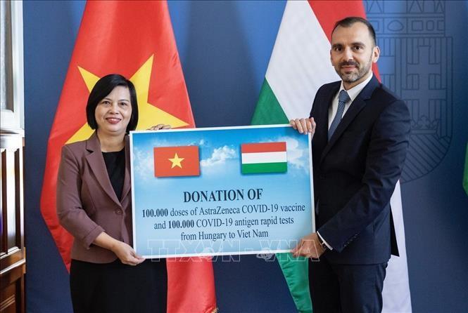Vietnam recibe insumos médicos donados por Hungría e Italia para combatir el covid-19 - ảnh 1