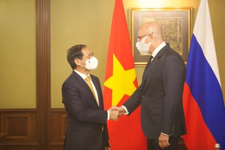 Promover la asociación estratégica integral entre Vietnam y Rusia - ảnh 1