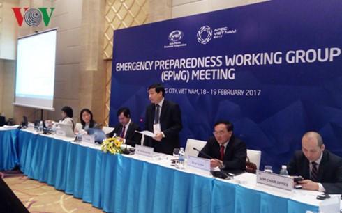 เวียดนามมีข้อเสนอแนะและข้อคิดริเริ่มหลายข้อในการประชุมกลุ่มปฏิบัติงานต่างๆของเอเปก - ảnh 1