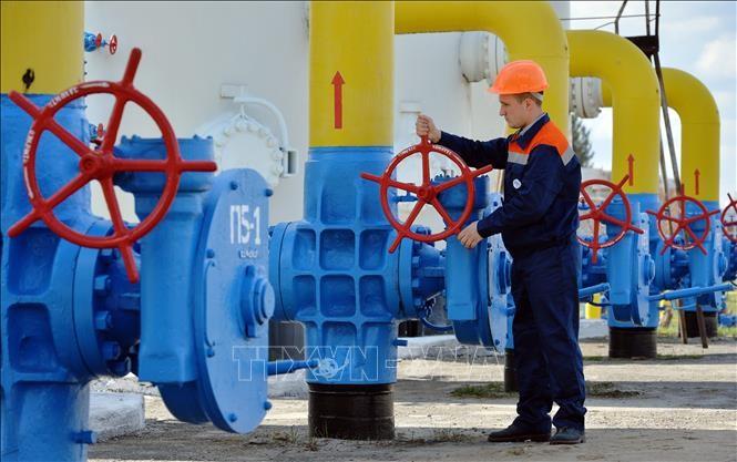 รัสเซียเสนอเงื่อนไขจัดสรรก๊าซธรรมชาติให้แก่ยูเครน - ảnh 1
