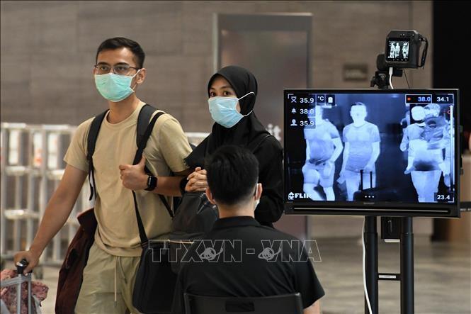 การช่วยเหลือพลเมืองในปัญหาการเข้าประเทศสิงคโปร์ - ảnh 1