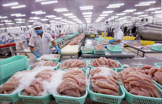 Oxford Economics พยากรณ์ว่า เศรษฐกิจเวียดนามจะฟื้นตัวอย่างรวดเร็วและขยายตัวร้อยละ 2.3 ในปี 2020 - ảnh 1