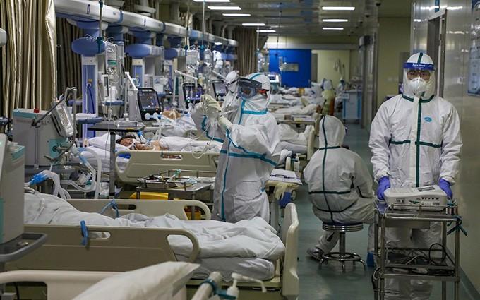 ทั่วโลกพบผู้ติดเชื้อของโรคโควิด-19 กว่า 18 ล้านราย - ảnh 1