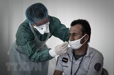 จำนวนผู้ติดเชื้อโรคโควิด-19 ในทั่วโลกอยู่ที่ประมาณ 25 ล้านราย - ảnh 1
