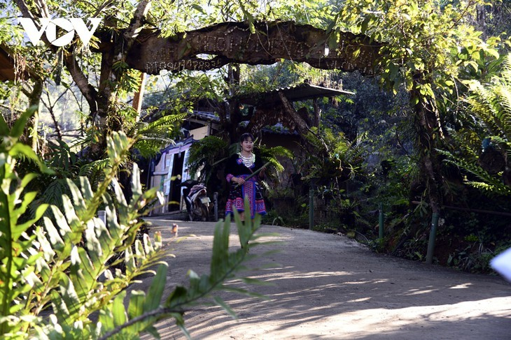 หมู่บ้านชนเผ่าม้งที่เชิงเขา เซินบากไม - ảnh 2